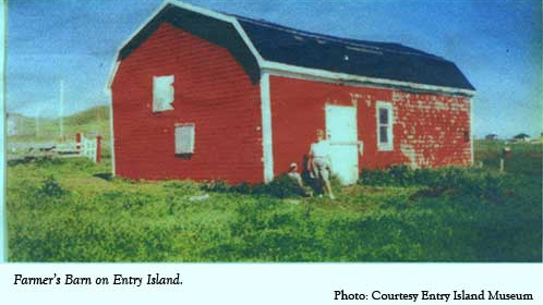 horse called farmer barn entry island
